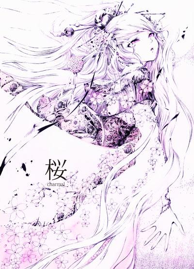 桜彩表22
