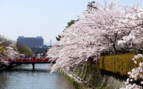 京都 (232)