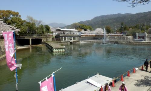 京都 (239)