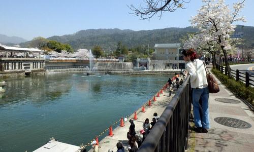 京都 (240)