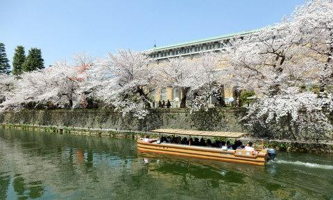 京都 (243)