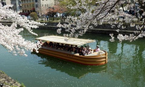 京都 (250)