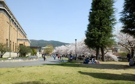 京都 (257)