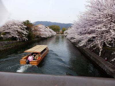 京都 (131)