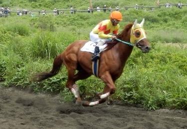 草競馬 (10)
