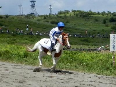 草競馬 (14)