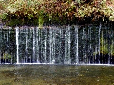 白糸の滝 (34)