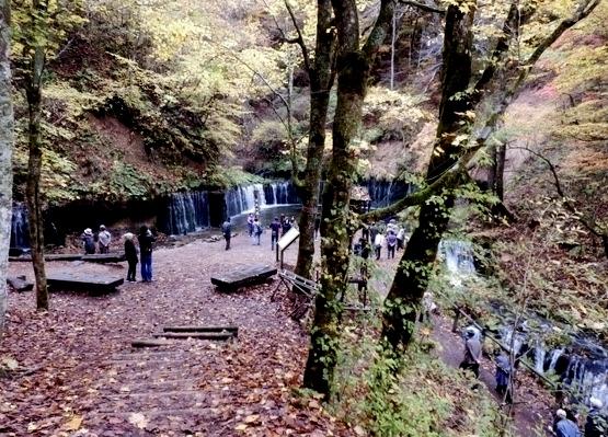 白糸の滝 (20)