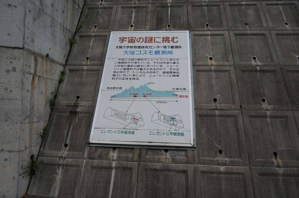 DSC05988_R.jpg