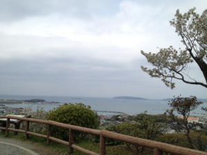 写真 2013-03-30 12 25 38+1