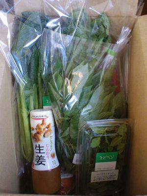 セレクティ じんわり生姜と野菜セット