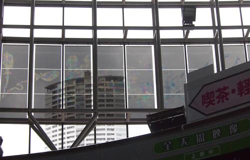 201310P_06118.jpg