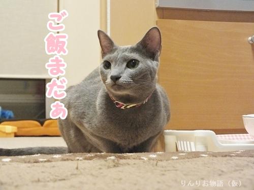 凛のお食事5
