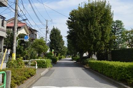 2014-10-11_15.jpg