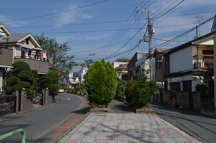 2014-10-11_57.jpg