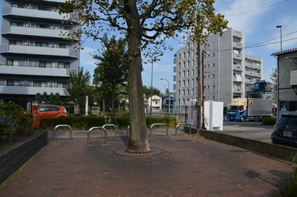 2014-10-11_66.jpg