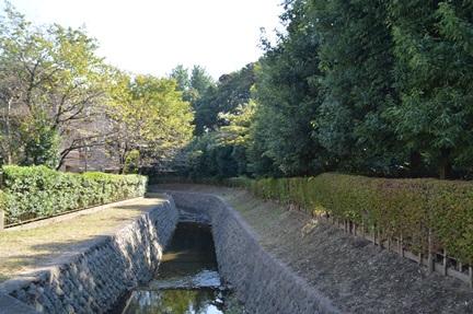 2014-10-18_151.jpg