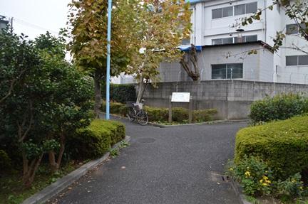 2014-11-08_108.jpg