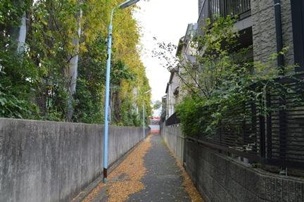 2014-11-08_16.jpg