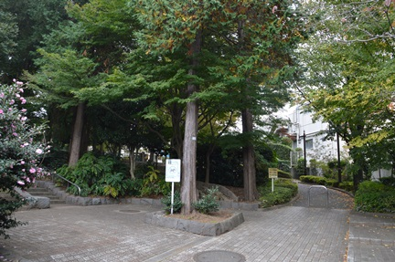 2014-11-08_9.jpg