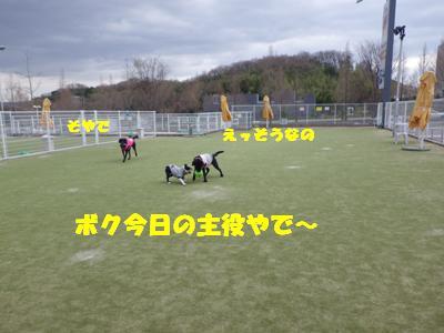 よろく (3)