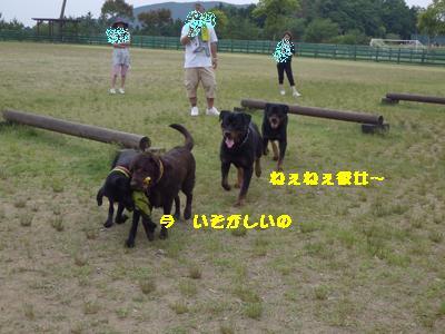 IMGP6256.jpg