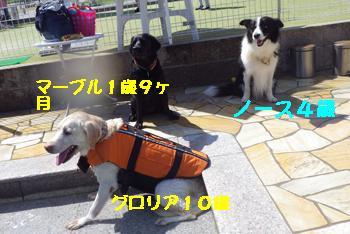 IMGP7744.jpg