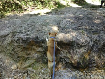 乳岩峡 3