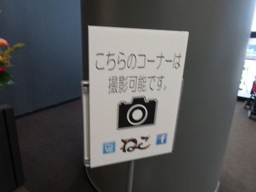 neco12.jpg
