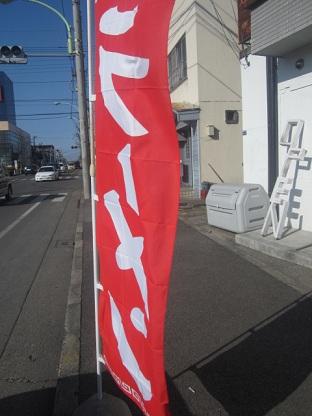 saga-r8.jpg