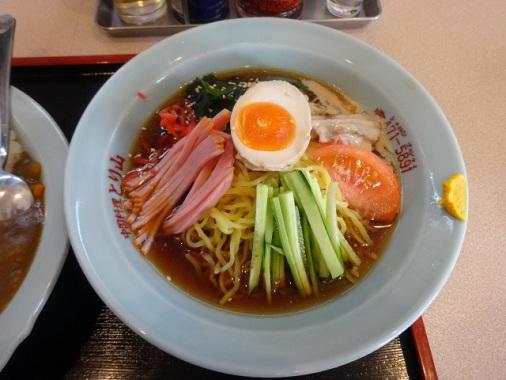 toriyama-hc4.jpg