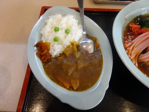 toriyama-hc5.jpg