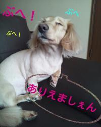 縺ゅj縺医↑縺Юconvert_20130816024304