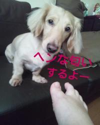 縺ク繧薙↑蛹ゅ>_convert_20130816024011