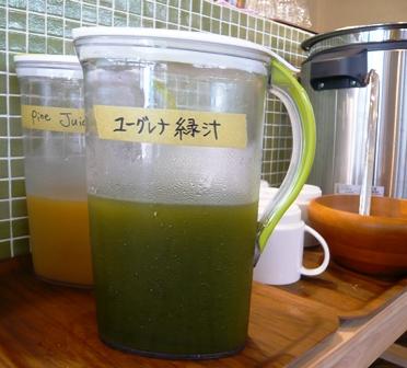 ユーグレナガーデン:ユーグレナ緑汁