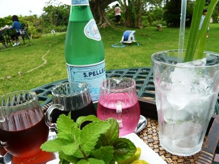 GARDEN PANA:ハーブの微炭酸ソーダ2