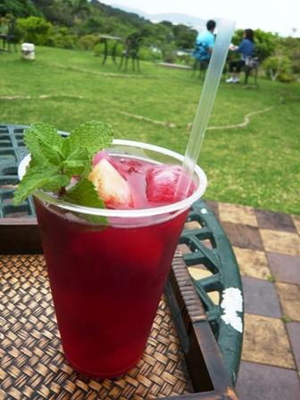 GARDEN PANA:南島冷茶・ハイビスカスティー