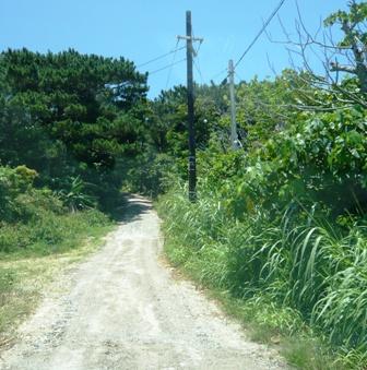 島のレストラン:途中の路