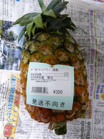 パインハワイ種1