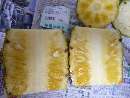 パインハワイ種2