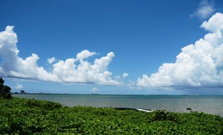 ビーチテラス:芝生から海を眺める