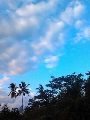 201394午後の光