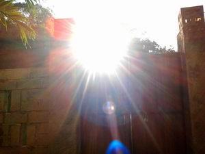 201394朝の光