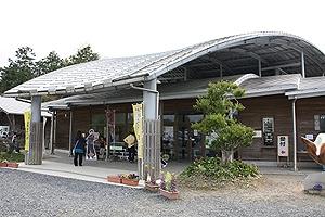 なぎビカリアミュージアム1