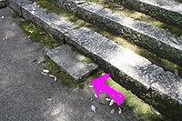 岩部八幡神社2