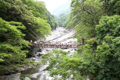 祖谷のかずら橋1