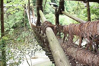 祖谷のかずら橋2