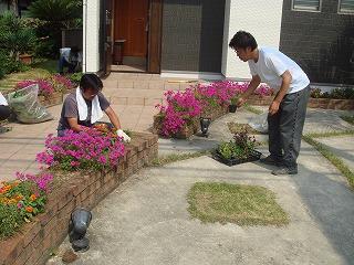 大町モデルの花植え02