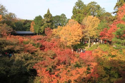 秋の京都旅6