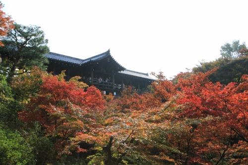 秋の京都旅7